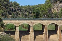Bro och skog Arkivfoton