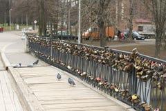 Bro och slottar Royaltyfria Bilder