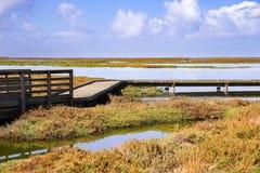 Bro och strandpromenad till och med Alviso träsk, San Jose, södra San Francisco Bay, Kalifornien royaltyfri foto