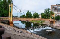 Bro och vattenfall royaltyfri bild