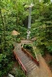 Bro och vattenfall i en skog Arkivbild