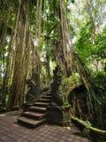 Bro på apan Forest Sanctuary i Ubud, Bali, Indonesien Royaltyfri Fotografi
