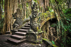 Bro på apan Forest Sanctuary i Ubud, Bali, Indonesien fotografering för bildbyråer