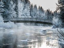 Bro på den kalla vinterdagen Fotografering för Bildbyråer