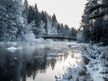 Bro på den kalla vinterdagen Arkivfoton