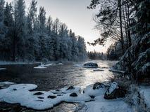 Bro på den kalla vinterdagen Arkivbild