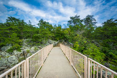 Bro på den Olmsted ön, på Great Falls, chesapeaken & Ohio Cana Arkivbild