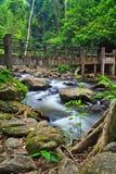 Bro på denLa-U vattenfallet i Thailand Royaltyfria Foton