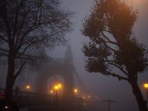 Bro på en dimmig dag Royaltyfri Bild