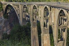Bro på floden Tara i Montenegro Royaltyfri Fotografi