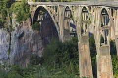 Bro på floden Tara i Montenegro Royaltyfri Bild