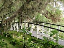 Bro på magnoliakolonin i charlestonen, SC Royaltyfria Foton