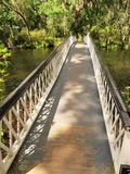 Bro på magnoliakolonin i charlestonen, SC Arkivbild
