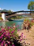 Bro på Punakha Dzong och den Mo Chhu floden i Bhutan Arkivbild