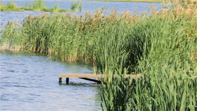 Bro på sjön i vasserna arkivfilmer