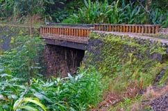 Bro på vägen till Hana, Maui Arkivfoton