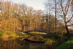 Bro reflekterad i vatten i en parkera arkivfoto