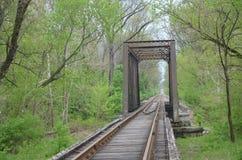 Bro som bär den järnväg linjen Royaltyfri Fotografi