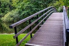 Bro till en skog på den Haagse bosen, skog i Haag Royaltyfri Foto