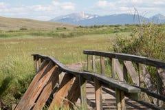 Bro till en trägångbana Arkivbilder