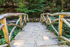 Bro till naturen Royaltyfria Foton