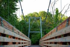 Bro till naturen Royaltyfri Fotografi