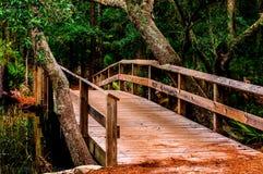 Bro till okändan Royaltyfria Foton