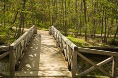 Bro till skogen med skuggor på en Sunny Day Royaltyfria Foton