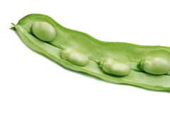 Broad bean. Close up of some broad beans inside the pod royalty free stock image
