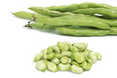 Broad bean. Some broad bean pods and some broad bens isolated on a white background stock image