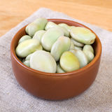 Broad bean. Stock Image