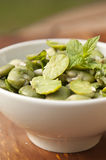 Broad Bean. Tradition green boiled broad bean Royalty Free Stock Image