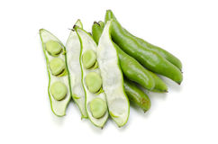 Broad bean Stock Image