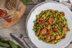 Broad bean with chorizo. Typical portuguese food royalty free stock photos