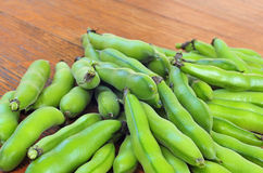 Broad bean Stock Images