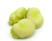 Broad bean close up. On white Stock Image