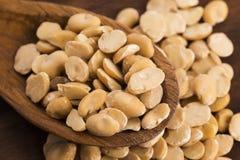 Broad bean dry Stock Photo