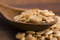 Broad bean dry Stock Image