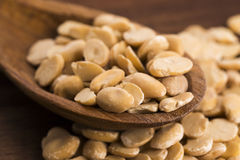 Broad bean dry Royalty Free Stock Image