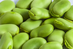Broad bean green seeds, field bean, bell Royalty Free Stock Photo