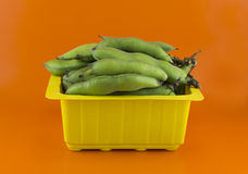 Broad bean pods Royalty Free Stock Images