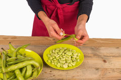 Broad bean pods Stock Photo