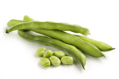 Broad bean pods and seeds Stock Photography