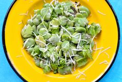 Broad bean salad with hard cheese. Stock Photos
