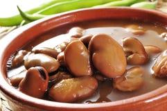 Broad bean stew Royalty Free Stock Photo