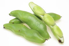 Broad bean in a white background Royalty Free Stock Photo