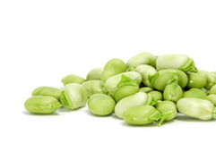 Broad beans. Closeup of some broad beans isolated on a white background royalty free stock photo