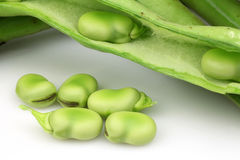 Broad beans. Bunch of broad beans and some peeled ones on a white background stock photos