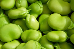 Free Broad Beans Stock Image - 34841561