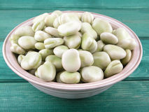 Broad beans stock photos